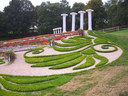 entertaining flower pattern on summer sity grounds Stock Photo - 3109303