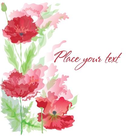 poppy field: Fondo con amapolas en efecto de acuarela