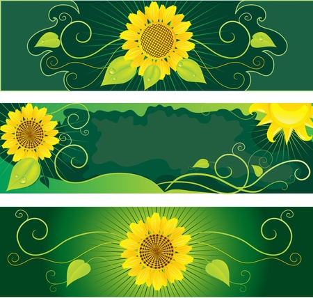 Set of backgrounds with sunflowers Ilustração