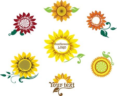 girasol: preparado para configurar el logotipo que representa un girasol estilizada