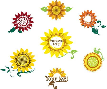 abstract seed: set prepared for the logo depicting a stylized sunflower