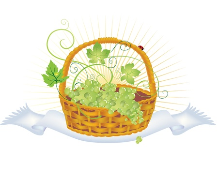 illustration of a wicker basket with grapes on a towel Vector