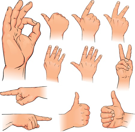 illustration various poses of human hands Vector