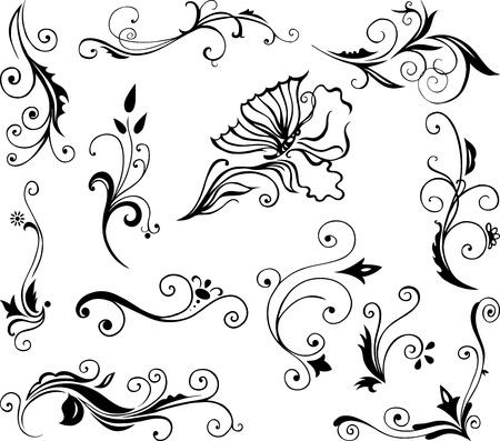 set van wervelende decoratieve bloemen elementen ornament Stock Illustratie