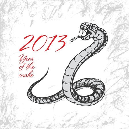 Snake symbol 2013 on grunge background  Vector