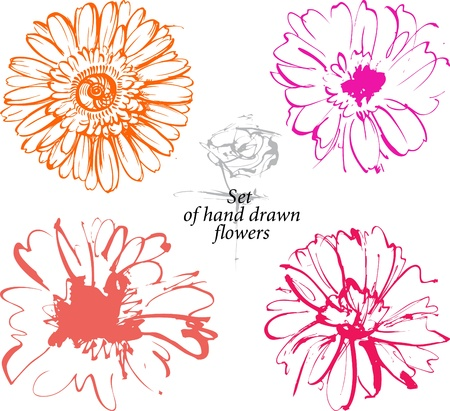material flower: Set of hand drawn sketchers flowers