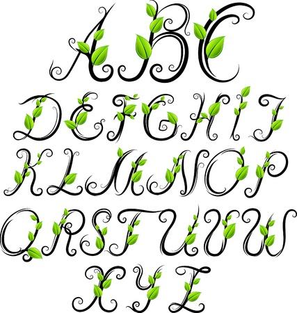 hand drawn eco alphabet