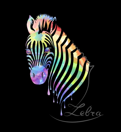 zebra heads: Colored abstract zebra on black background Illustration