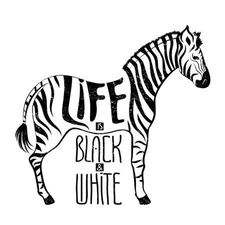 Zebra concept drawing, hand drawn illustration for t-short design Illustration