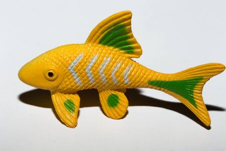 Yellow fish toy