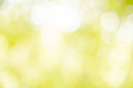 Yellow bokeh defocused, background and texture from nature Stock fotó