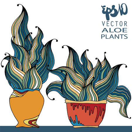 aloe vera plant: Decorative vector still life - flower in a pot