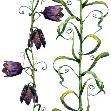 bellflower: Bellflower. Hand painted watercolor in vector format. Seamless borders. Illustration