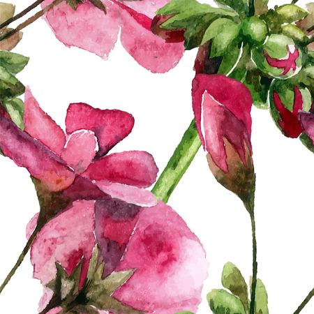 Geranium. Aquarel hand geschilderde afbeelding. Naadloos patroon.