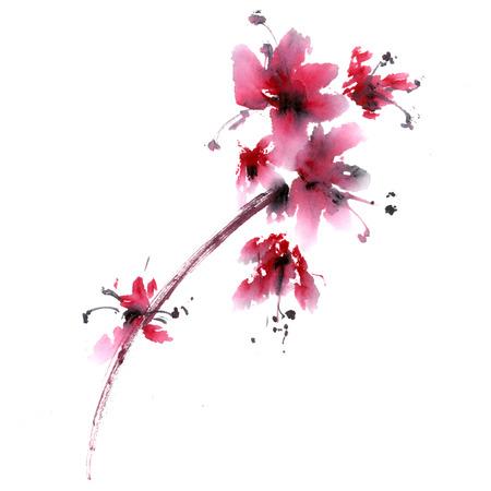 사쿠라 꽃입니다. 중국 스타일의 미 - 전자의 수채화 및 잉크 anillustration. 동양 전통 회화. 스톡 콘텐츠