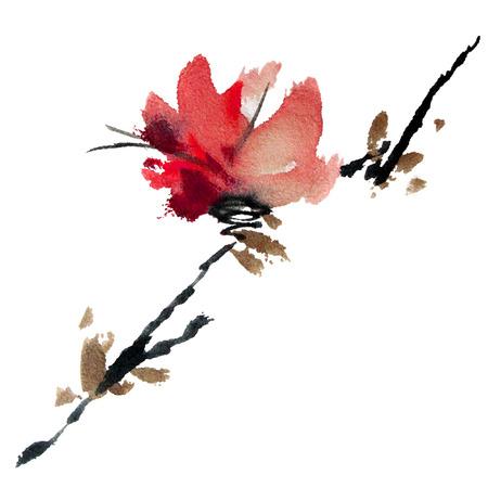 ciruela: Árbol de Sakura. Acuarela y de la tinta en el estilo del sumi-e, u-pecado. Pintura tradicional oriental.