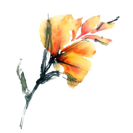 exotic: Exotic flower. Watercolor.