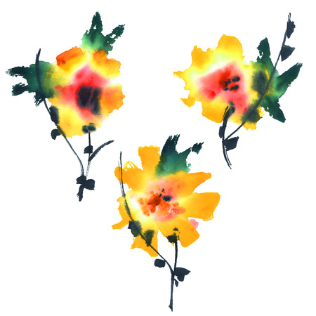 exotic flowers: Exotic flowers, watercolor painted.