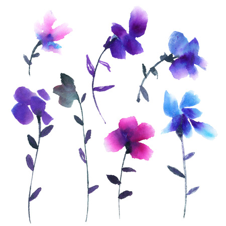isolated: Violets. Watercolor painted flowers set.