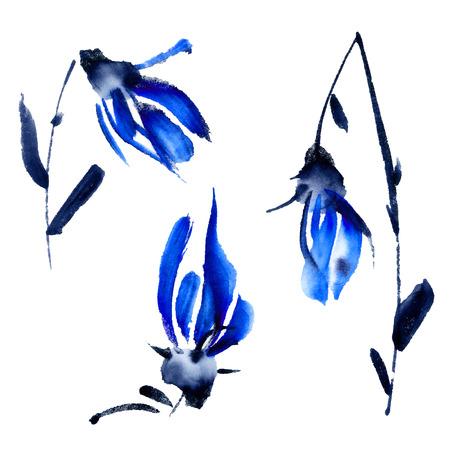 brush painting: Watercolor painted flowers set