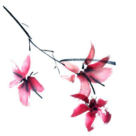 Sakura bloem. Waterverf en inkt illustratie in stijl sumi-e, u-zonde. Oosterse traditionele schilderkunst.