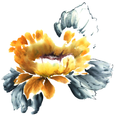 sumi e: Watercolor and ink illustration of flower in style sumi-e, u-sin. Oriental traditional painting