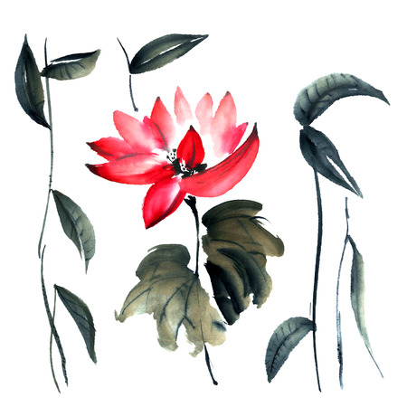 sumi e: Watercolor and ink illustration of lotus flower in style sumi-e, u-sin. Oriental traditional painting.