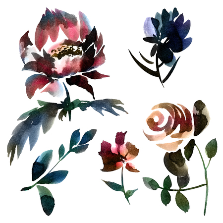 Flowers. Watercolor and ink illustration of flowers set