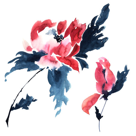 sumi e: Red peonies. Watercolor illustration.