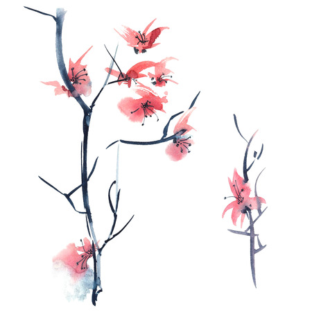 sumi e: Sakura. Watercolor and ink illustration in style Stock Photo