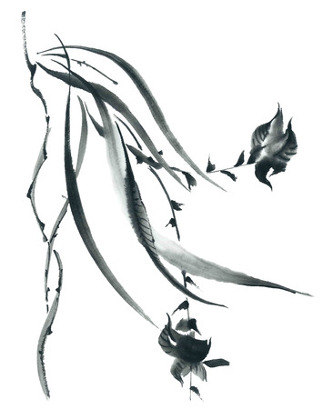 Ink illustration of blossom orchid and grass. Sumi-e, u-sin painting.