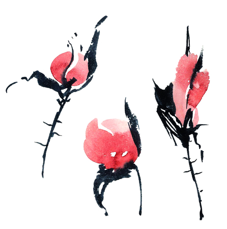 Watercolor and ink illustration of red flower buds in style sumi-e, u-sin. Oriental traditional painting. Stock Photo