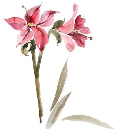 Waterverf en inkt illustratie van de rode bloem in stijl sumi-e, u-zonde. Oosterse traditionele schilderkunst.