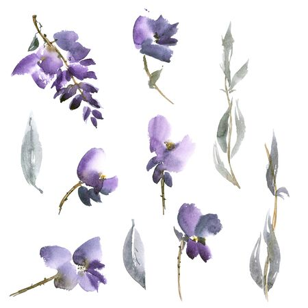 gohua: Watercolor and ink illustration of violet flowers in style sumi-e, u-sin, gohua. Oriental traditional painting. Stock Photo
