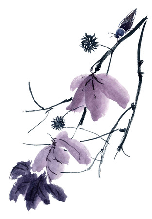 gohua: Watercolor and ink illustration of  tree and cicada. Gohua, sumi-e, u-sin painting.