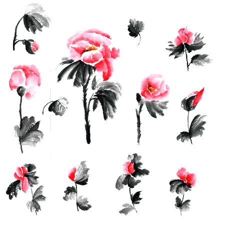 gohua: Peony flowers. Watercolor and ink illustration in style sumi-e, u-sin. Oriental traditional painting