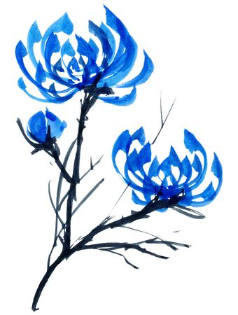 gohua: Watercolor and ink illustration in style gohua, sumi-e, u-sin of chrysanthemum bouquet. Oriental traditional painting