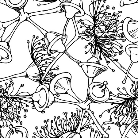 eucalyptus: Hand drawn sketch of eucalyptus flowers and buds. Vector seamless pattern.