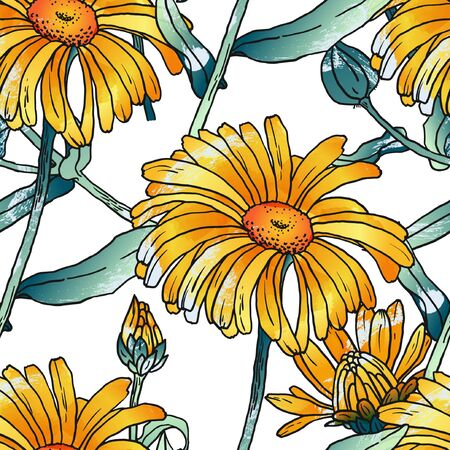 Hand drawn sketch illustration of primula with flowers, buds, leaves. Contour graphic. Vector seamless pattern.