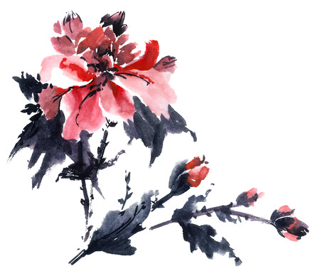 Watercolor and ink illustration of blossom flower. Gohua, sumi-e, u-sin painting.