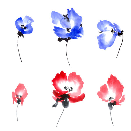 Watercolor and ink illustration of blue and red flowers