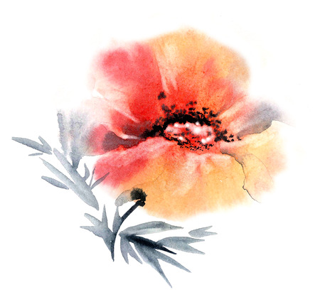 Watercolor and ink illustration of flower in style sumi-e, u-sin.