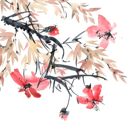 Watercolor and ink illustration of blossom tree. Sumi-e, u-sin painting.