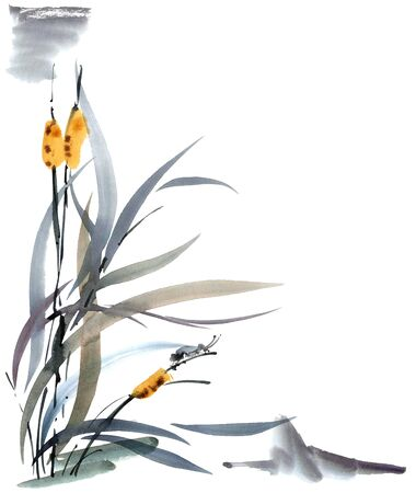 aquarell: Grass and insect