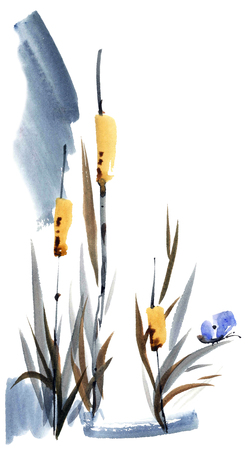 Watercolor and ink illustration of reed with butterfly. Sumi-e, u-sin painting. Oriental traditional style. Stock Photo