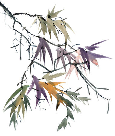 Watercolor and ink illustration of tree foliage in style sumi-e, u-sin. Oriental traditional painting. Stock Photo