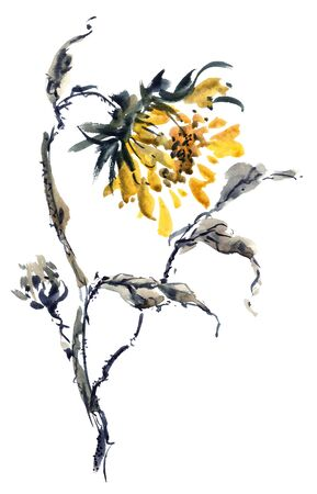 Watercolor and ink illustration of sunflower in style sumi-e, u-sin. Oriental traditional painting. Stock Photo