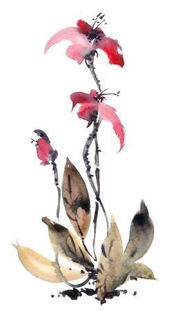 Watercolor and ink illustration of orchides. Sumi-e, u-sin painting. Stock Photo