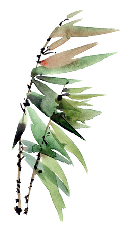 Watercolor and ink illustration of tree branch with leaves in style sumi-e, u-sin. Oriental traditional painting. Stock Photo