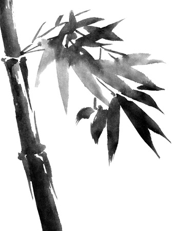 Tropical bamboo with leaves